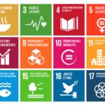 Iass rsp Sustainable Development